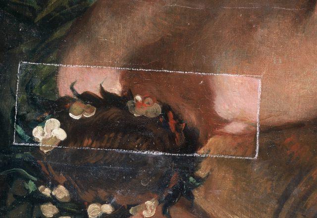 galerie-apollon-charles-le-brun-musee-du-louvre-1